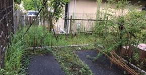 (清掃実例)ガレージ、お庭の雑草除去