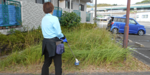 伸びた雑草の刈り取り作業