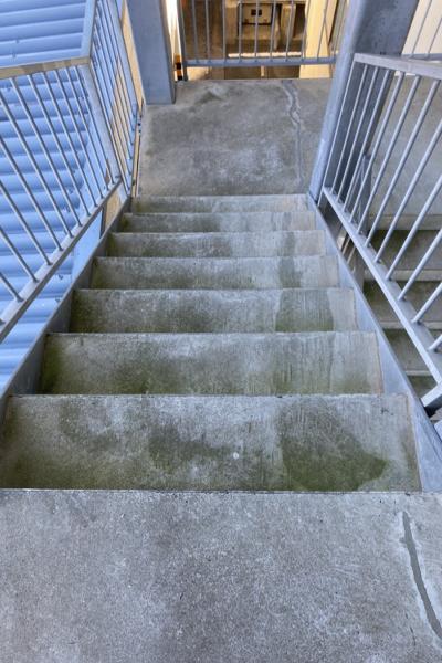 コケで緑に変色した外階段