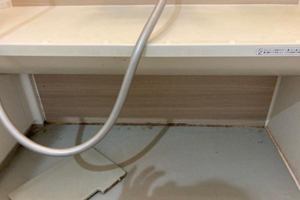カビのひどい浴室の目地(清掃作業前)