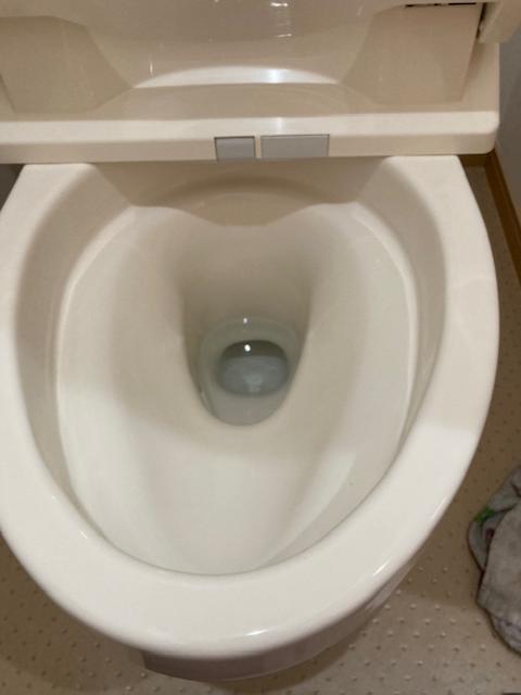 真っ白になったウォシュレット付きトイレ
